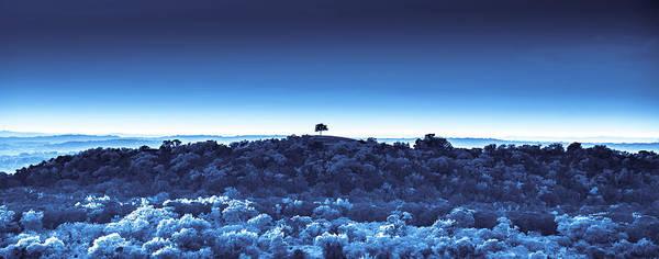 Digital Art - One Tree Hill -blue -2 by Darryl Dalton
