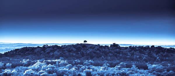 Digital Art - One Tree Hill - Blue - 3 by Darryl Dalton
