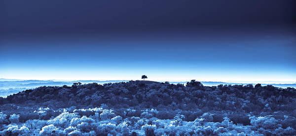 Digital Art - One Tree Hill - Blue 4 by Darryl Dalton