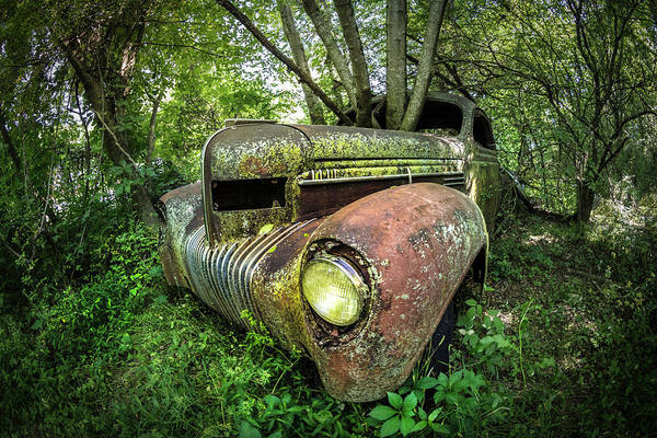 Photograph - One With Nature Vintage Truck by Debra and Dave Vanderlaan