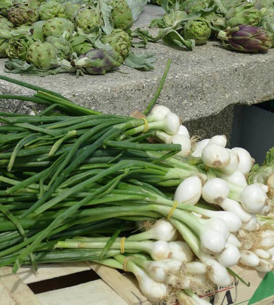 Photograph - Onions And Artichokes For Sale by Steve Estvanik