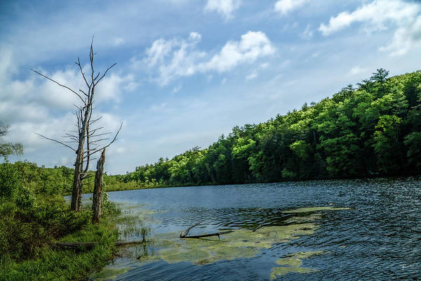 Photograph - Onteora Lake, Kingston, Ny by Tom Romeo