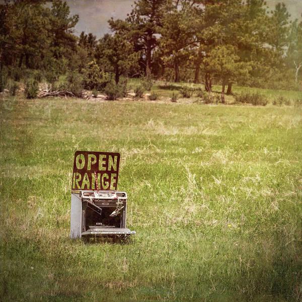 Photograph - Open Range by Joan Carroll