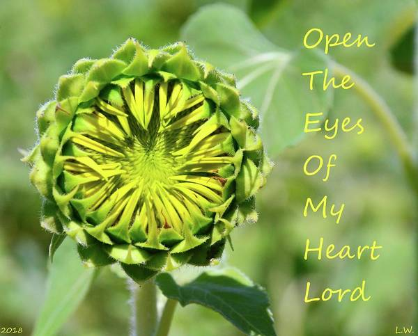 Photograph - Open The Eyes Of My Heart Lord by Lisa Wooten