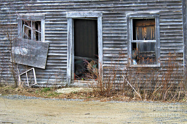 Photograph - Openly Abandoned by Debbie Stahre