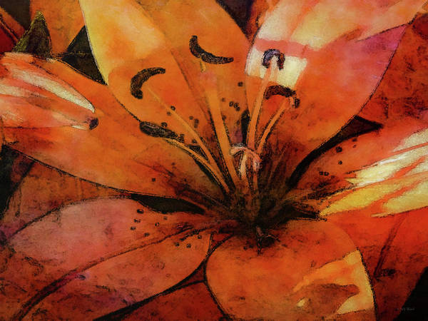Photograph - Orange Asiatic Lily 9326 Idp_2 by Steven Ward