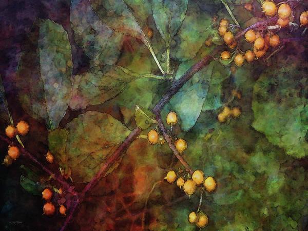 Photograph - Orange Berries 5317 Idp_2 by Steven Ward