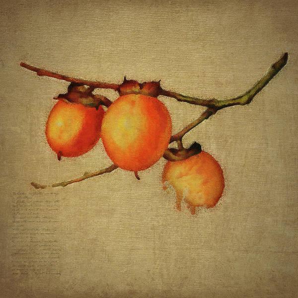 Digital Art - Orange Berries by Jan Keteleer
