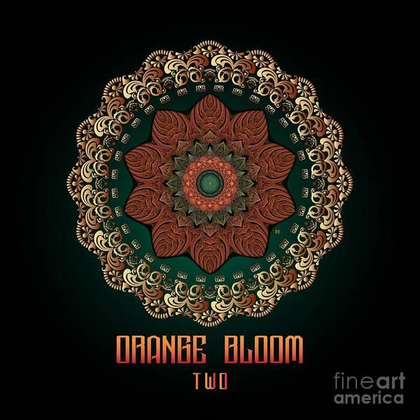 Digital Art - Orange Bloom Two by Doug Morgan