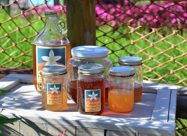 Wall Art - Photograph - Orange Blossom Honey For Sale by David Lee Thompson