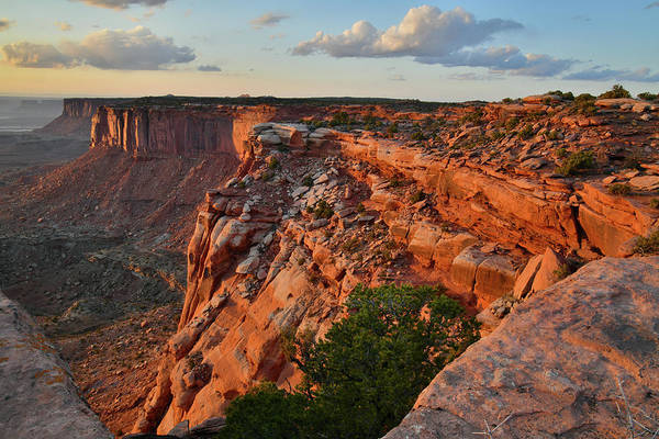 Photograph - Orange Cliffs Forever In Canyonlands Np by Ray Mathis