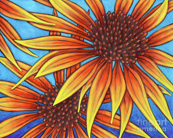 Painting - Orange Coneflowers by Amy E Fraser