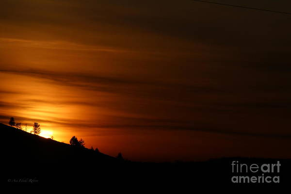 Photograph - Orange Dawn by Ann E Robson