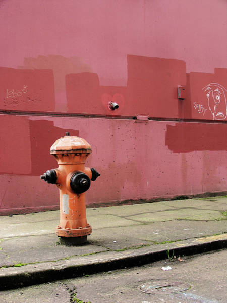 Water Hydrant Photograph - Orange Fire Hydrant With Pink And Red by Kevinruss