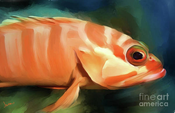 Andrew Jackson Wall Art - Painting - Orange Fish by Andrew Jackson