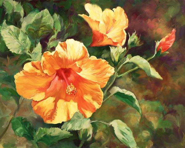 Hibiscus Painting - Orange Hibiscus by Laurie Snow Hein