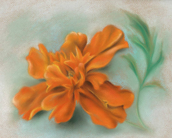Pastel - Orange Marigold And Leaf by MM Anderson