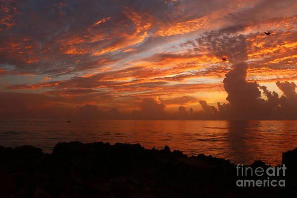 Photograph - Orange Ocean Sunrise by Tom Claud