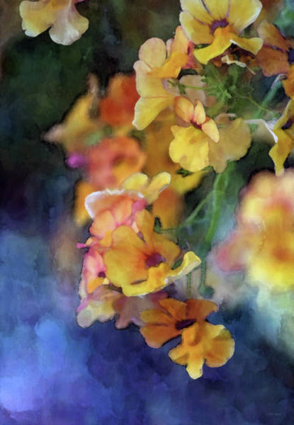 Photograph - Orange Suspended 6595 Idp_2 by Steven Ward