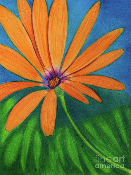 Osteospermum Painting - Orange Symphony On A Cool Spring Day  by Dorothy Lee