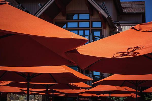 Photograph - Orange Umbrellas by Jeanette Fellows