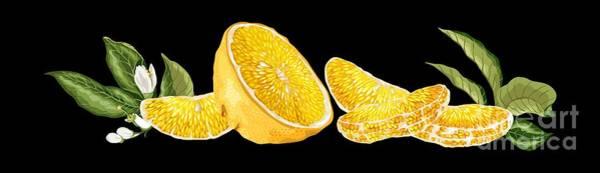 Wall Art - Digital Art - Orange With Flowers by Yulia Fushtey