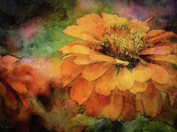 Photograph - Orange Zinnia 1316 Idp_2 by Steven Ward