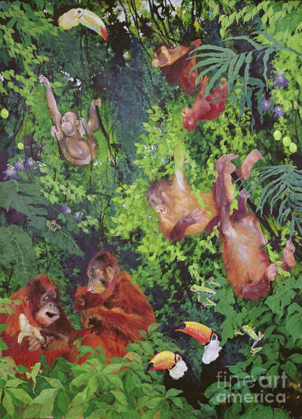Wall Art - Painting - Orangutangs And Toucans by Odile Kidd