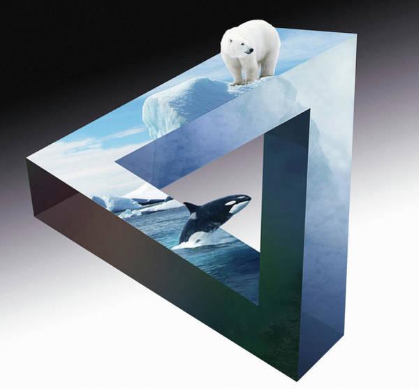 Killer Whales Wall Art - Digital Art - Orca And White Bear by ArtMarketJapan