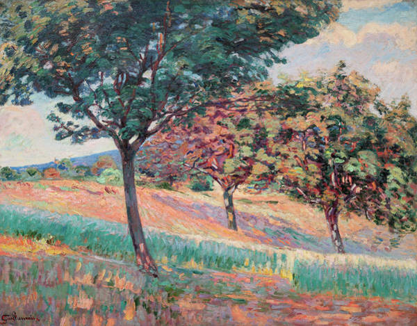 Wall Art - Painting - Orchard At The Edge Of A Wood In Saint-cheron by Armand Guillaumin
