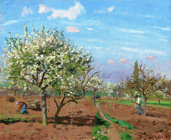 Wall Art - Painting - Orchard In Bloom, Louveciennes - Digital Remastered Edition by Camille Pissarro
