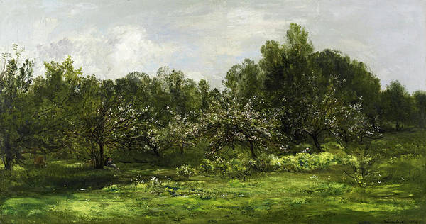 Almond Painting - Orchard In Blossom, 1874 by Charles-Francois Daubigny