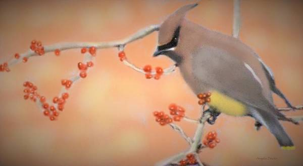 Painting - Orchard Waxwing by Angela Davies