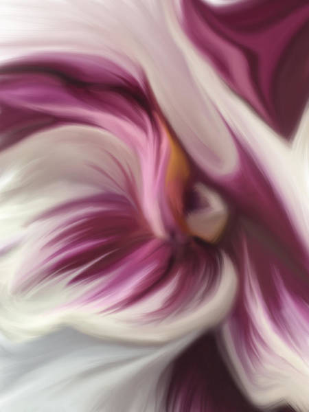 Wall Art - Digital Art - Orchid Abstraction 5.22 by Mary Crook