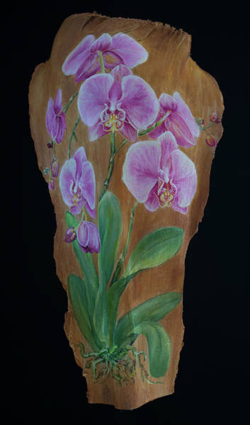 Painting - Orchid In Pink by Nancy Lauby