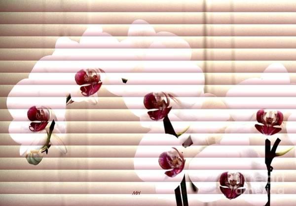 Wall Art - Photograph - Orchids Behind The Blinds by Marsha Heiken