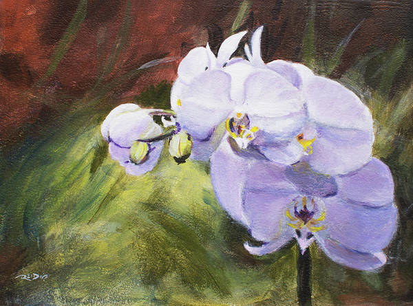 Painting - Orchids by Christopher Reid