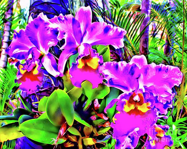 Wall Art - Photograph - Orchids Hawaii by Jerome Stumphauzer
