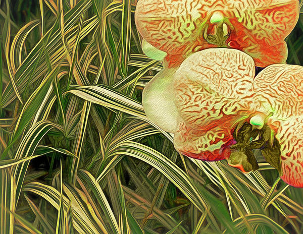Mixed Media - Orchids In The Grass by Lynda Lehmann