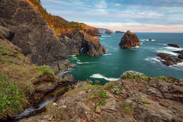 Photograph - Oregon Coastal Scenic by Leland D Howard