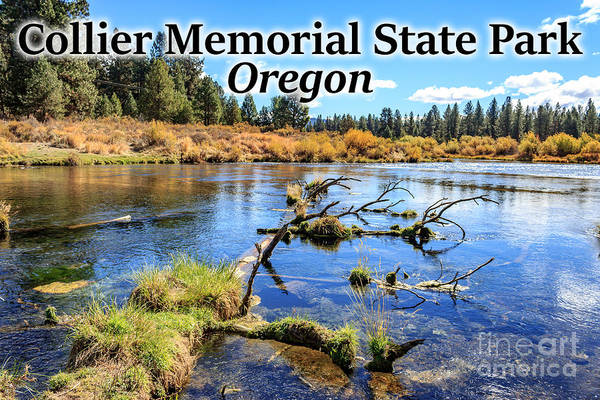 Photograph - Oregon - Collier Memorial State Park by G Matthew Laughton