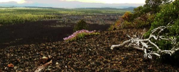 Digital Art - Oregon Lava by Vincent Green