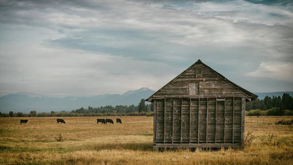Wall Art - Photograph - Oregon Pastoral by Joseph Smith