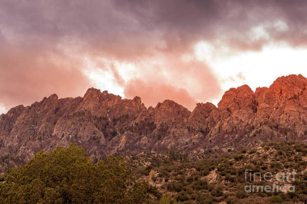 Photograph - Organ Mountains Las Cruces by Blake Webster