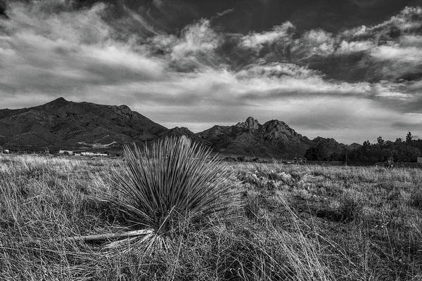 Photograph - Organ Mountains, New Mexico Black And White by Chance Kafka