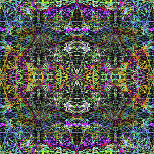 Digital Art - Fractal Organelles, No. 2 by Walter Neal