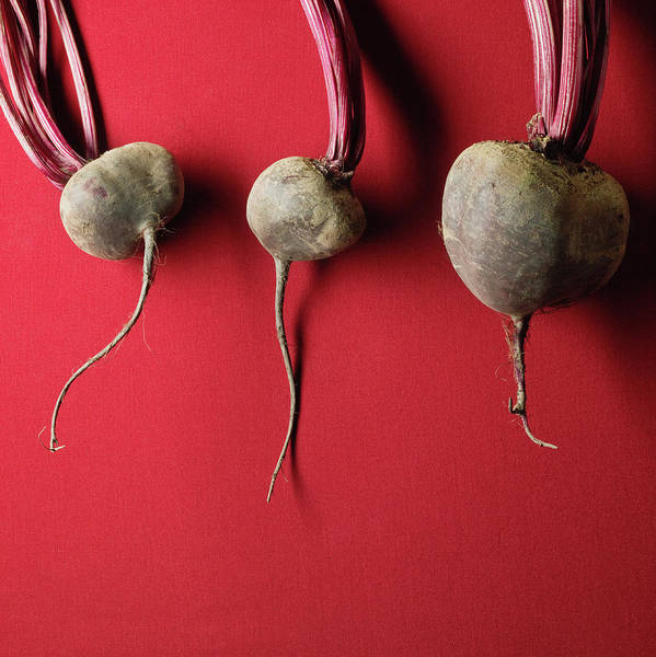 Sparse Photograph - Organic Beets by Monica Rodriguez