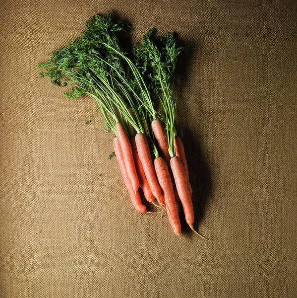 Sparse Photograph - Organic  Carrots by Monica Rodriguez