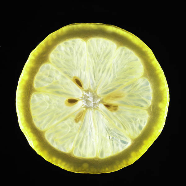 Lemon Photograph - Organic Lemon by Monica Rodriguez