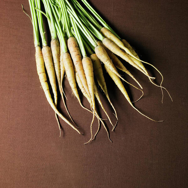 Sparse Photograph - Organic Turnips by Monica Rodriguez